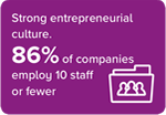 Strong entrepeneurial culture. 86% of companies employ 10 staff or fewer